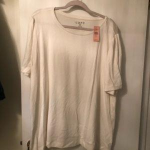 Loft - White Short Sleeve Sweater Top